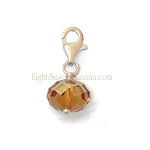 Crystal Drop Charm